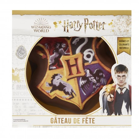 - Gâteau 3D Harry Potter
