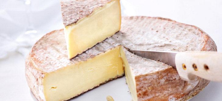Filière fromage : le St-Nectaire